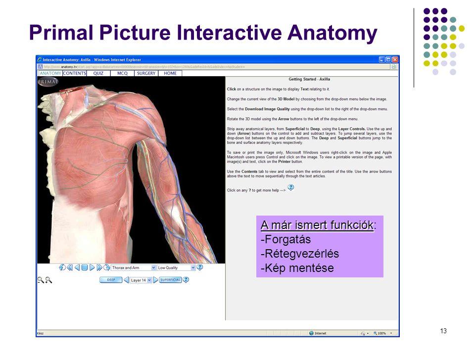 13 Primal Picture Interactive Anatomy Surgery – Axilla A már ismert funkciók: -F-Forgatás -R-Rétegvezérlés -K-Kép mentése