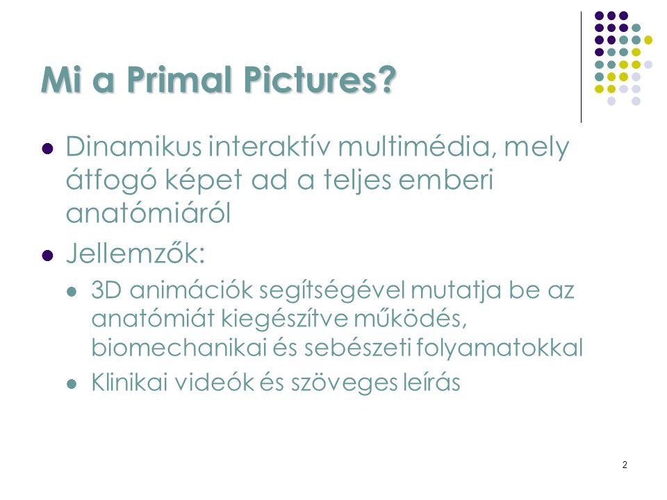 3 Hogyan érjük el a Primal Picture-t? Könyvtárunk honlapján keresztül: www.lib.sote.hu