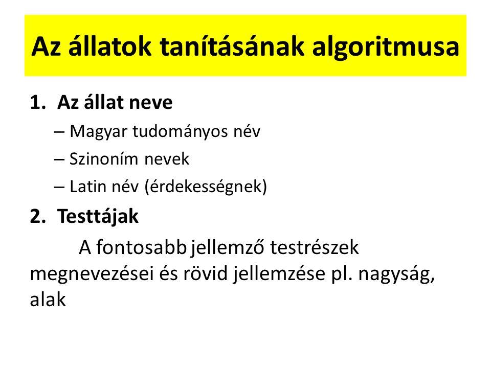 Az állatok tanításának algoritmusa 1.Az állat neve – Magyar tudományos név – Szinoním nevek – Latin név (érdekességnek) 2.Testtájak A fontosabb jellemző testrészek megnevezései és rövid jellemzése pl.