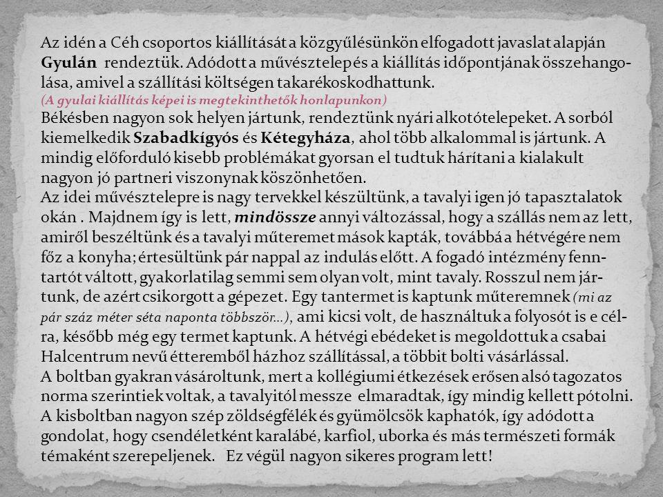 Az idén a Céh csoportos kiállítását a közgyűlésünkön elfogadott javaslat alapján Gyulán rendeztük.