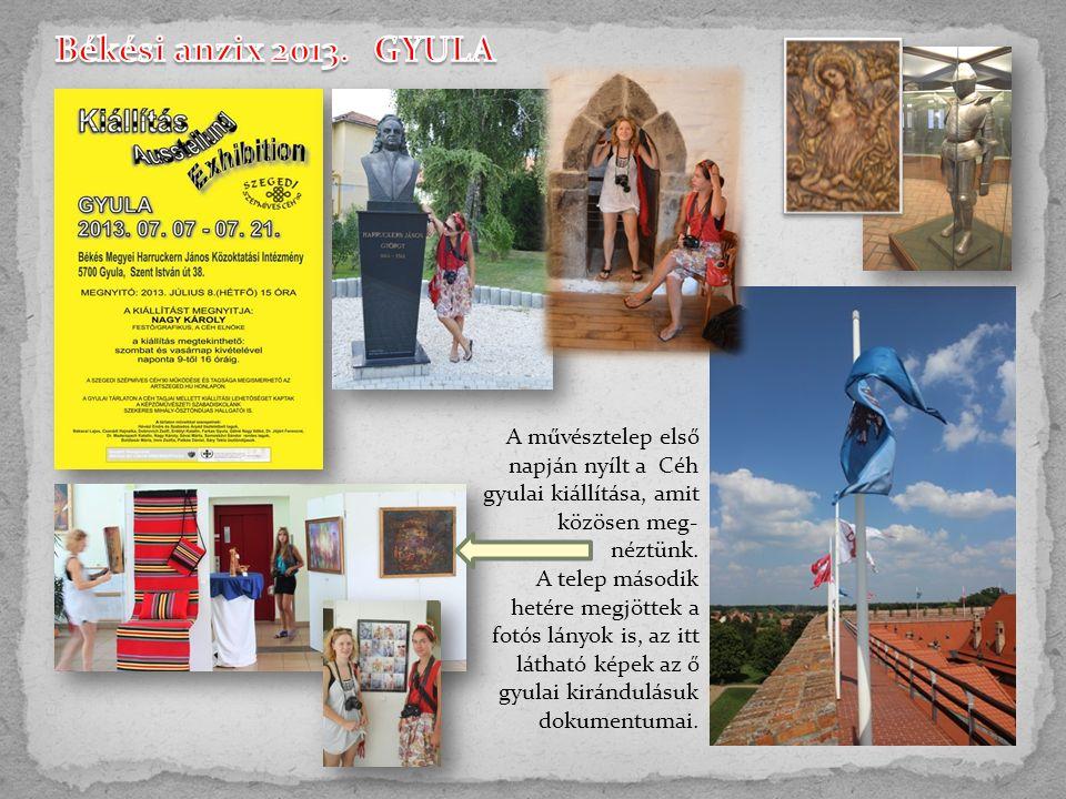 A művésztelep első napján nyílt a Céh gyulai kiállítása, amit közösen meg- néztünk.