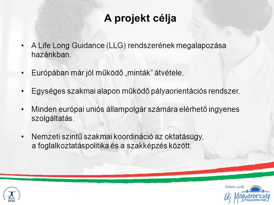 A Life Long Guidance (LLG) rendszerének megalapozása hazánkban.