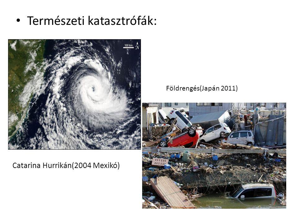 Természeti katasztrófák: Catarina Hurrikán(2004 Mexikó) Földrengés(Japán 2011)