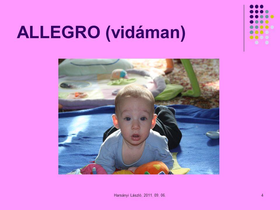 ALLEGRO (vidáman) 4Harsányi László, 2011. 09. 06.