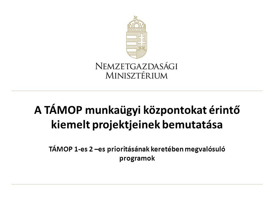 A TÁMOP munkaügyi központokat érintő kiemelt projektjeinek bemutatása TÁMOP 1-es 2 –es prioritásának keretében megvalósuló programok