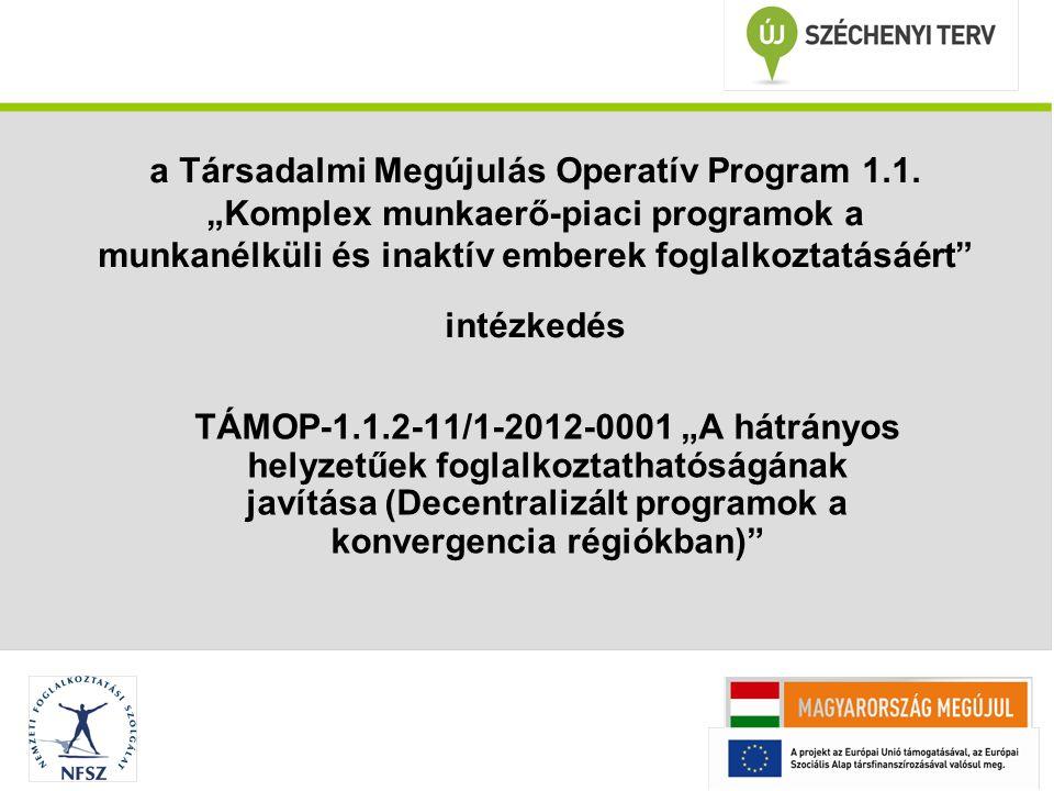 """a Társadalmi Megújulás Operatív Program 1.1. """"Komplex munkaerő-piaci programok a munkanélküli és inaktív emberek foglalkoztatásáért"""" intézkedés TÁMOP-"""