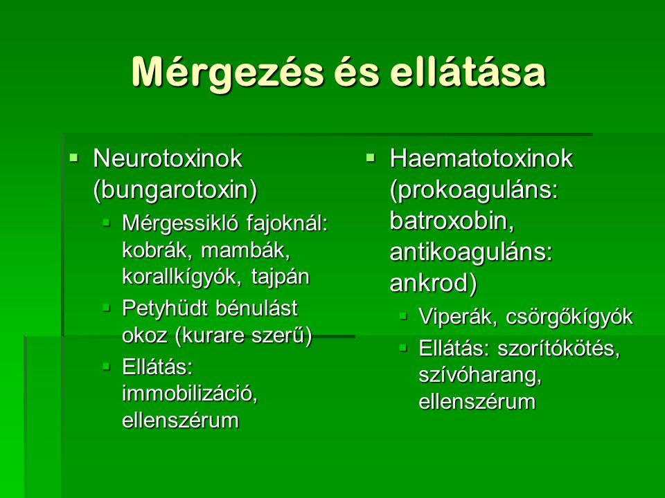 Mérgezés és ellátása  Neurotoxinok (bungarotoxin)  Mérgessikló fajoknál: kobrák, mambák, korallkígyók, tajpán  Petyhüdt bénulást okoz (kurare szerű)  Ellátás: immobilizáció, ellenszérum  Haematotoxinok (prokoaguláns: batroxobin, antikoaguláns: ankrod)  Viperák, csörgőkígyók  Ellátás: szorítókötés, szívóharang, ellenszérum