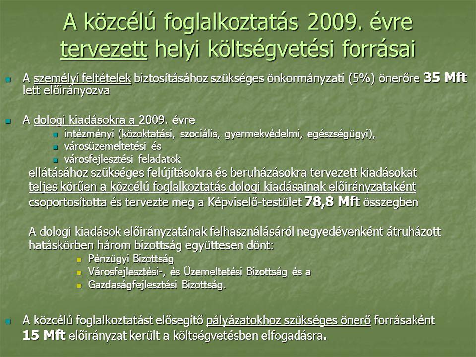A közcélú foglalkoztatás 2009.