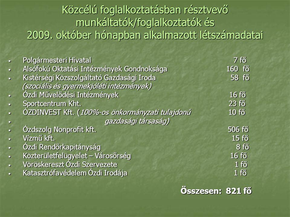 Közcélú foglalkoztatásban résztvevő munkáltatók/foglalkoztatók és 2009.