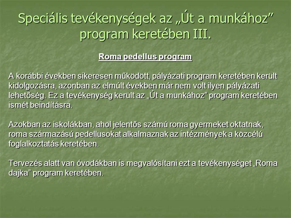 """Speciális tevékenységek az """"Út a munkához program keretében III."""