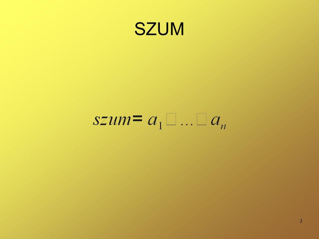3 SZUM