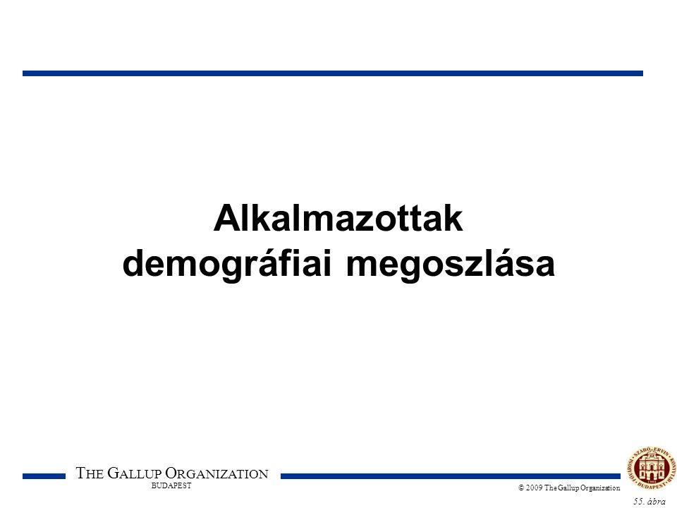 55. ábra T HE G ALLUP O RGANIZATION BUDAPEST © 2009 The Gallup Organization Alkalmazottak demográfiai megoszlása