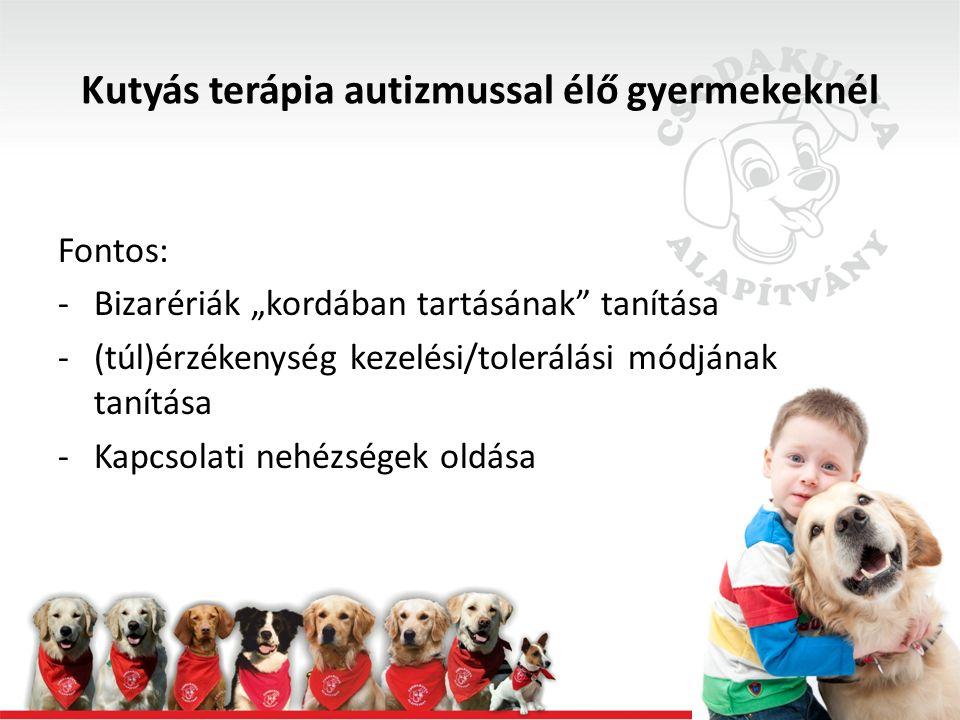 """Kutyás terápia autizmussal élő gyermekeknél Fontos: -Bizarériák """"kordában tartásának tanítása -(túl)érzékenység kezelési/tolerálási módjának tanítása -Kapcsolati nehézségek oldása"""