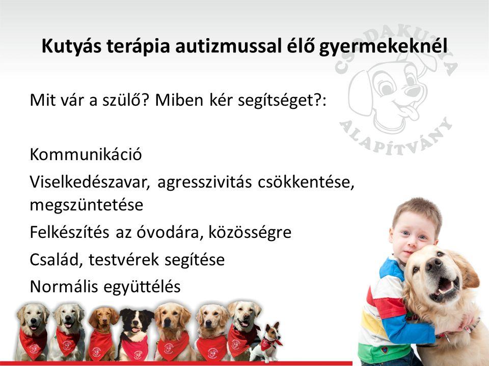 Kutyás terápia autizmussal élő gyermekeknél Mit vár a szülő.