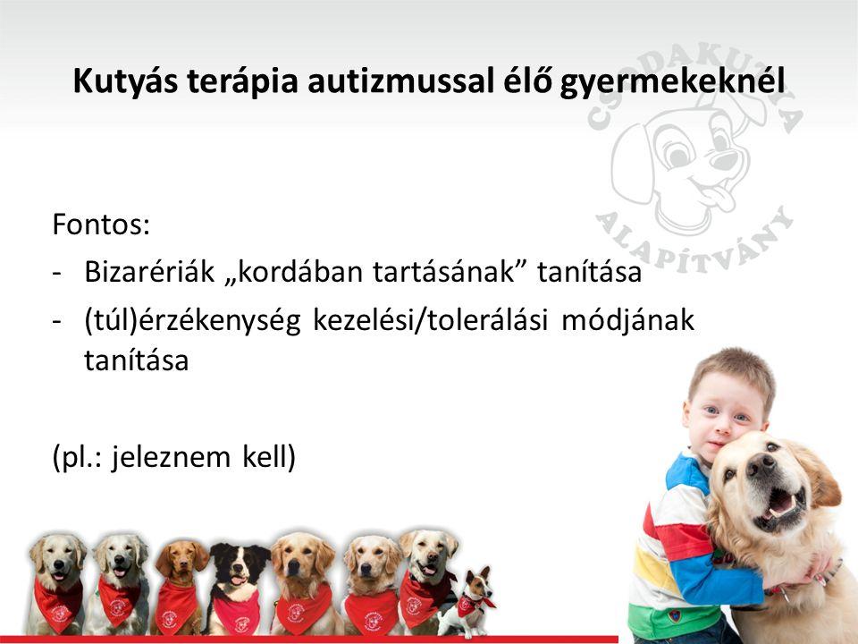 """Kutyás terápia autizmussal élő gyermekeknél Fontos: -Bizarériák """"kordában tartásának tanítása -(túl)érzékenység kezelési/tolerálási módjának tanítása (pl.: jeleznem kell)"""