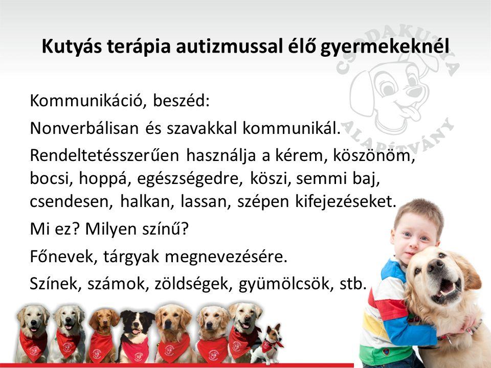 Kutyás terápia autizmussal élő gyermekeknél Kommunikáció, beszéd: Nonverbálisan és szavakkal kommunikál.