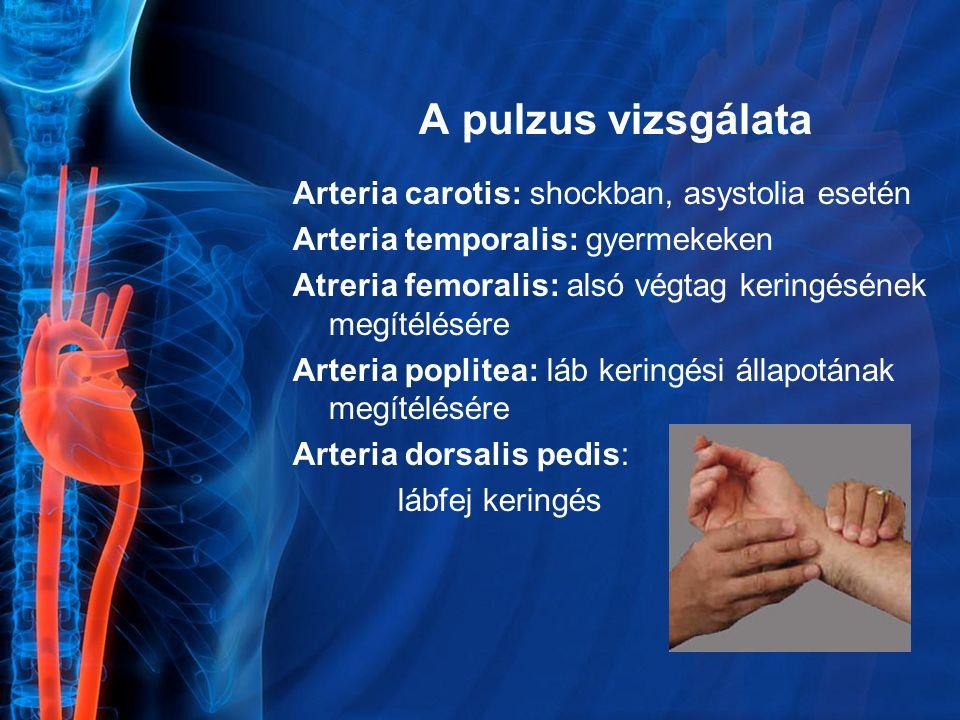 A pulzus vizsgálata Arteria carotis: shockban, asystolia esetén Arteria temporalis: gyermekeken Atreria femoralis: alsó végtag keringésének megítélésé