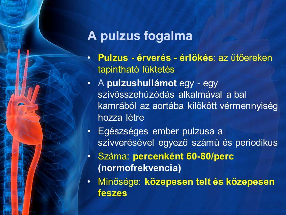 A pulzus fogalma Pulzus - érverés - érlökés: az ütőereken tapintható lüktetés A pulzushullámot egy - egy szívösszehúzódás alkalmával a bal kamrából az