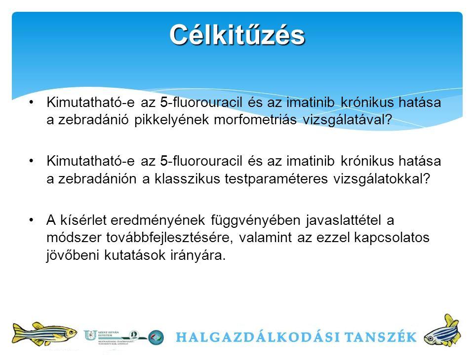 Célkitűzés Kimutatható-e az 5-fluorouracil és az imatinib krónikus hatása a zebradánió pikkelyének morfometriás vizsgálatával.