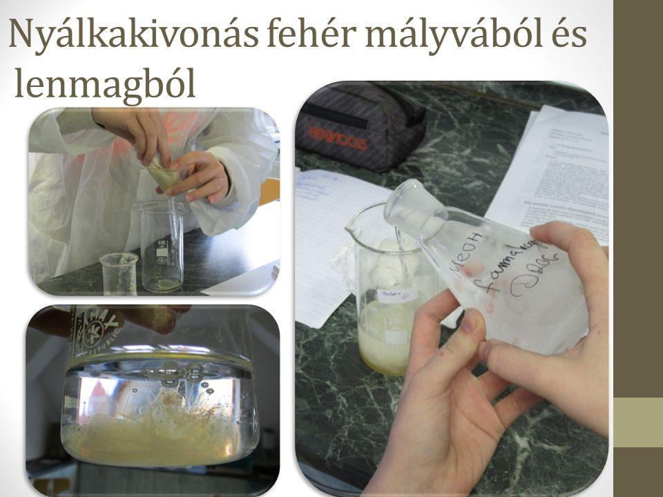 Nyálkakivonás fehér mályvából és lenmagból