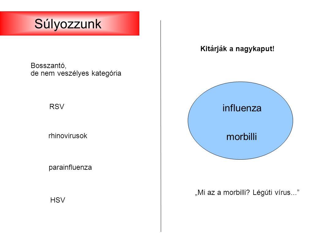 """RSV rhinovirusok parainfluenza HSV Bosszantó, de nem veszélyes kategória Kitárják a nagykaput! influenza morbilli """"Mi az a morbilli? Légúti vírus..."""""""