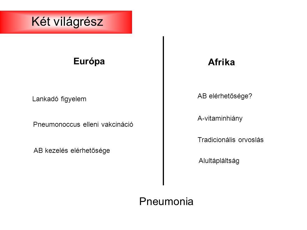 Európa Afrika AB elérhetősége? A-vitaminhiány Tradicionális orvoslás Lankadó figyelem Pneumonia Alultápláltság Pneumonoccus elleni vakcináció AB kezel