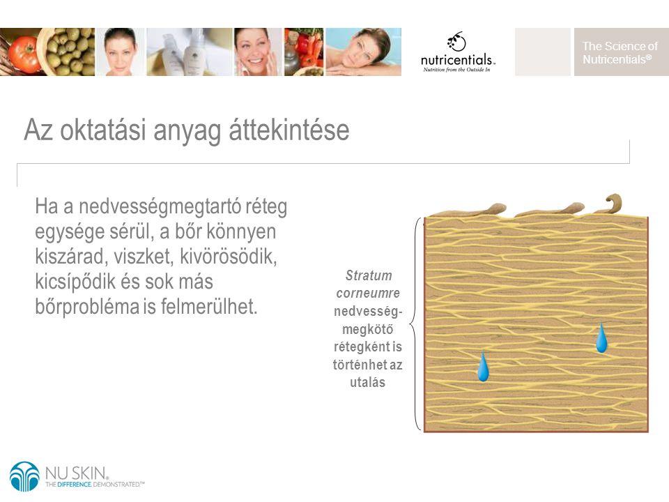 The Science of Nutricentials ® Az oktatási anyag áttekintése Ha a nedvességmegtartó réteg egysége sérül, a bőr könnyen kiszárad, viszket, kivörösödik,