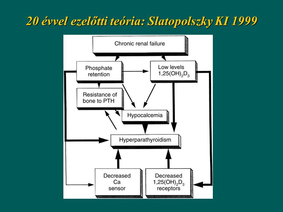20 évvel ezelőtti teória: Slatopolszky KI 1999