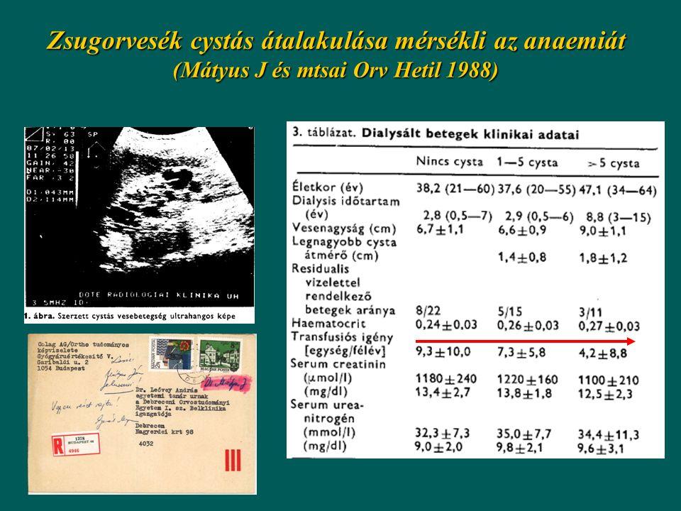 Zsugorvesék cystás átalakulása mérsékli az anaemiát (Mátyus J és mtsai Orv Hetil 1988)