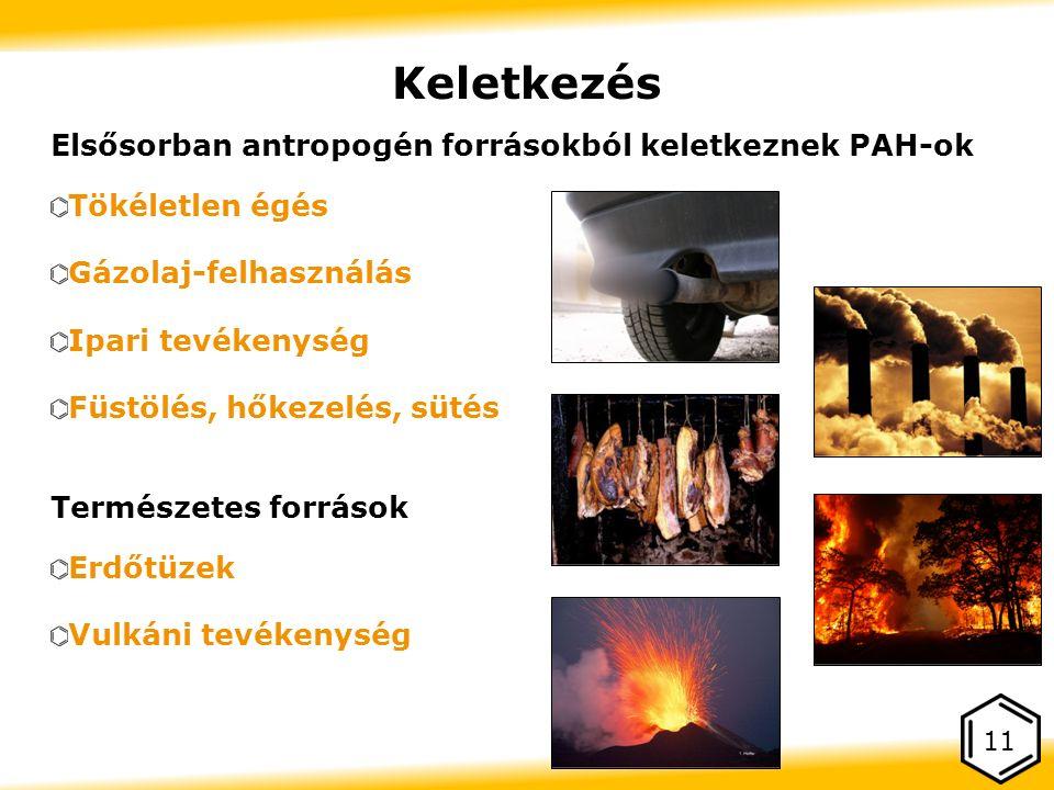 Keletkezés Elsősorban antropogén forrásokból keletkeznek PAH-ok Tökéletlen égés Gázolaj-felhasználás Ipari tevékenység Füstölés, hőkezelés, sütés Természetes források Erdőtüzek Vulkáni tevékenység 11