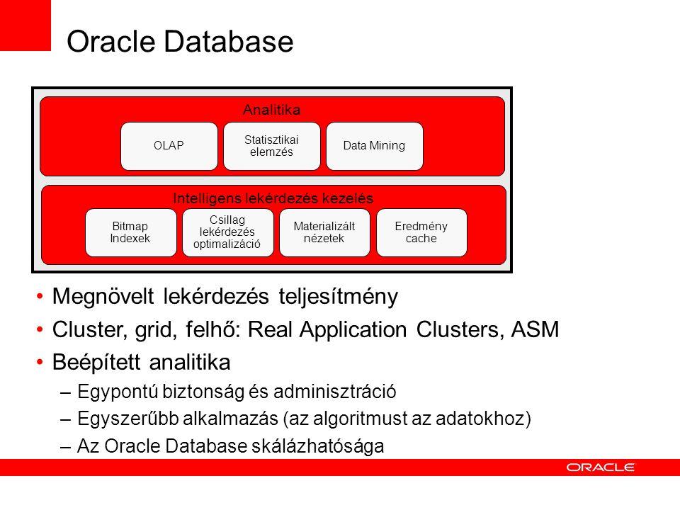 Oracle Database Intelligens lekérdezés kezelés Bitmap Indexek Csillag lekérdezés optimalizáció Materializált nézetek Eredmény cache Megnövelt lekérdezés teljesítmény Cluster, grid, felhő: Real Application Clusters, ASM Beépített analitika –Egypontú biztonság és adminisztráció –Egyszerűbb alkalmazás (az algoritmust az adatokhoz) –Az Oracle Database skálázhatósága Analitika OLAP Statisztikai elemzés Data Mining