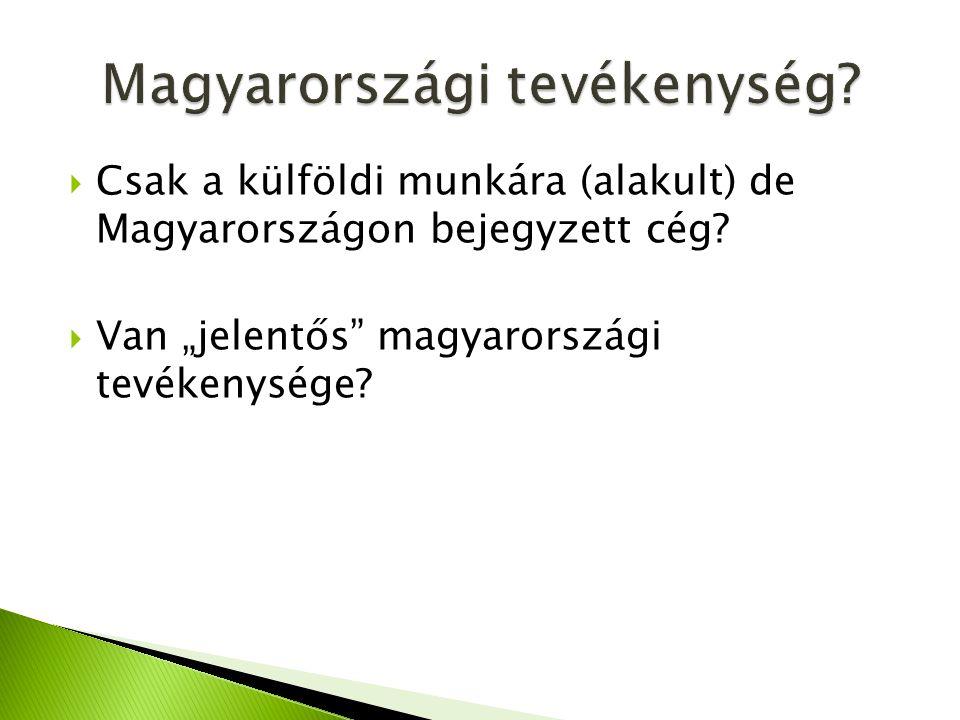 """ Csak a külföldi munkára (alakult) de Magyarországon bejegyzett cég?  Van """"jelentős"""" magyarországi tevékenysége?"""
