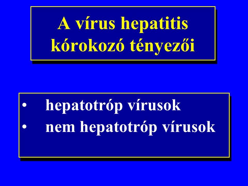 Krónikus hepatitis enyhe közepes súlyos fibrosis Májcirrhosis Végstádium májbetegség HCC A májbetegség progressziója CHC-ben 0 10 20 30 40 év Az infectio után eltelt idő