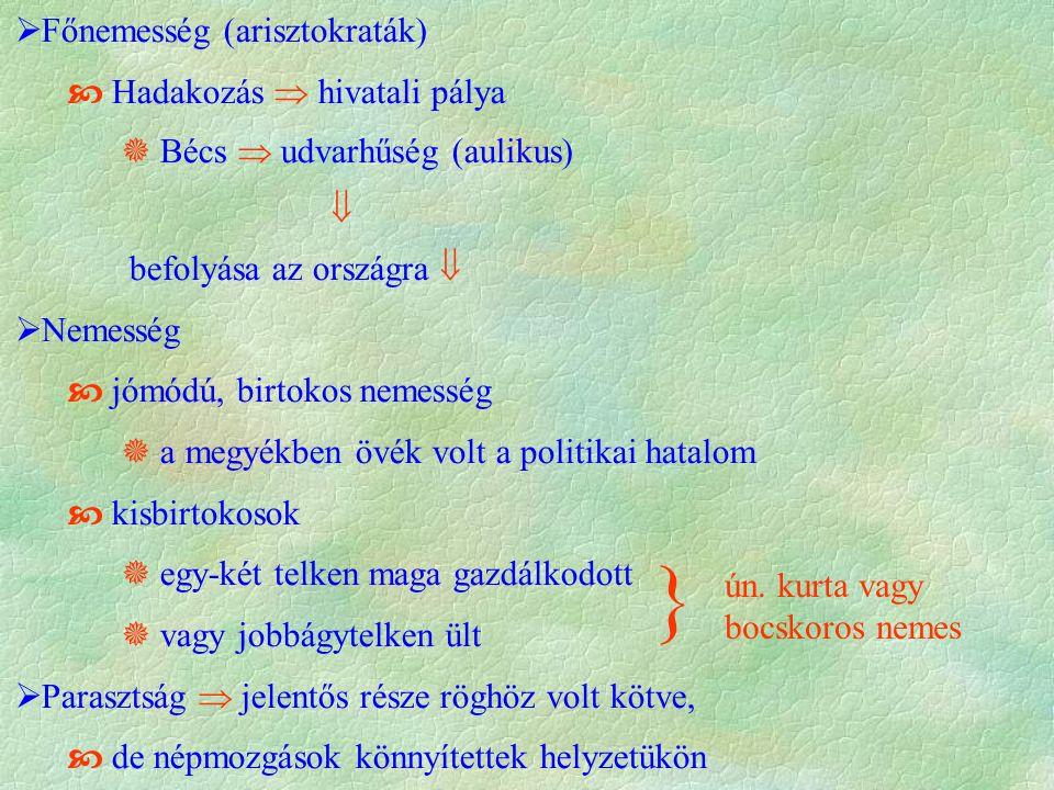 Főnemesség (arisztokraták)  Hadakozás  hivatali pálya  Bécs  udvarhűség (aulikus)  befolyása az országra   Nemesség  jómódú, birtokos nemesség  a megyékben övék volt a politikai hatalom  kisbirtokosok  egy-két telken maga gazdálkodott  vagy jobbágytelken ült  Parasztság  jelentős része röghöz volt kötve,  de népmozgások könnyítettek helyzetükön } ún.