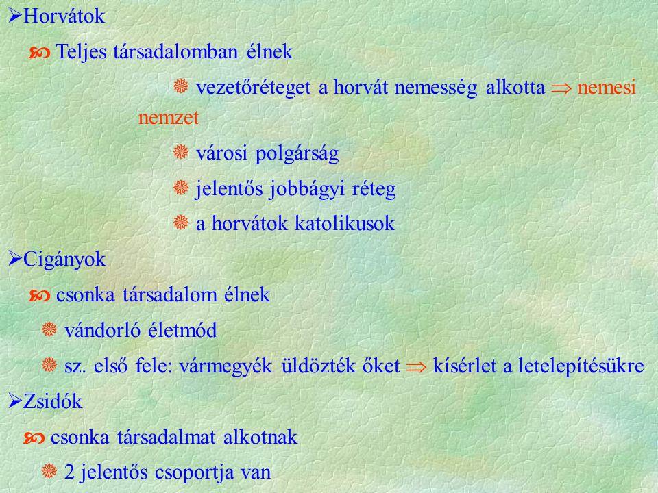  Horvátok  Teljes társadalomban élnek  vezetőréteget a horvát nemesség alkotta  nemesi nemzet  városi polgárság  jelentős jobbágyi réteg  a horvátok katolikusok  Cigányok  csonka társadalom élnek  vándorló életmód  sz.