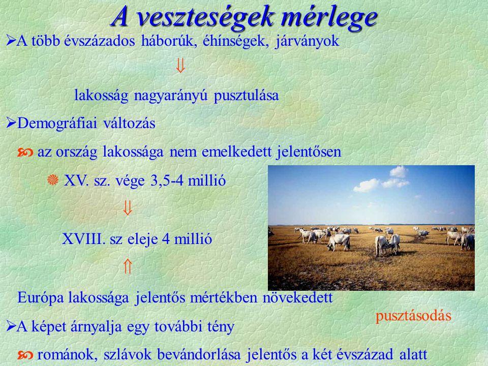 szerb határőrkatonák közszékely Telepesek