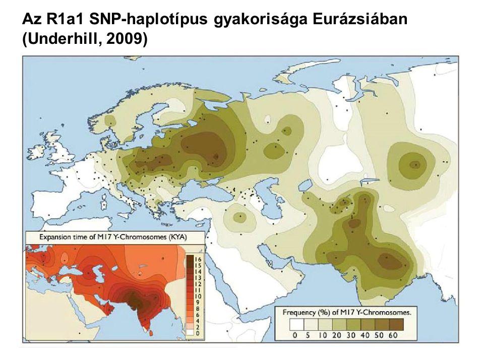 Az R1a1 SNP-haplotípus gyakorisága Eurázsiában (Underhill, 2009)