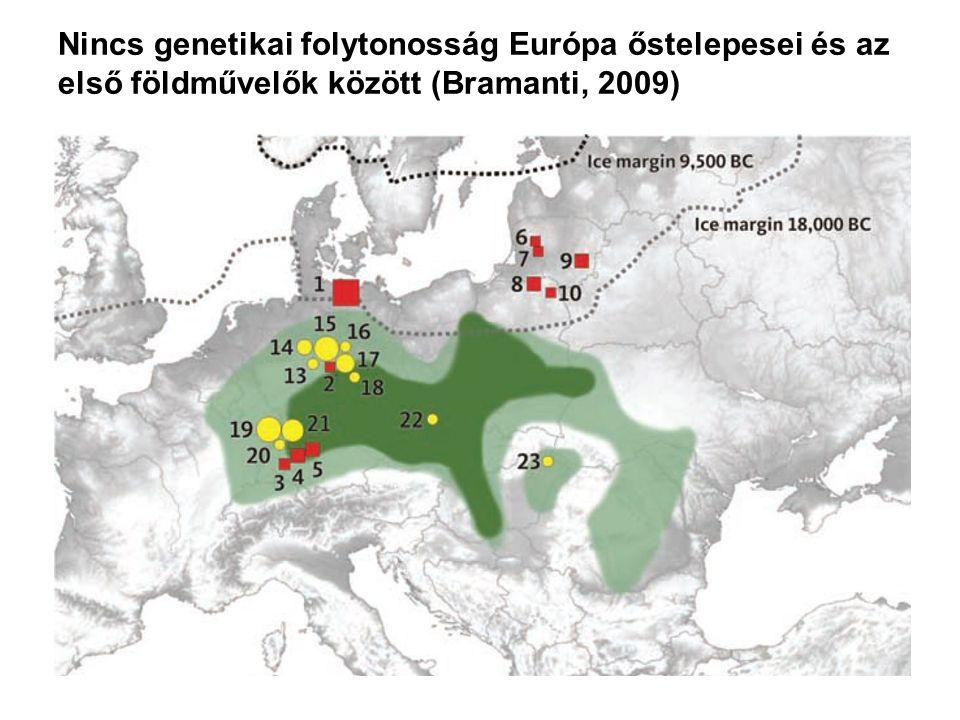 Nincs genetikai folytonosság Európa őstelepesei és az első földművelők között (Bramanti, 2009)