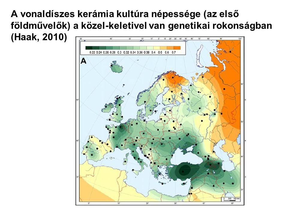 A vonaldíszes kerámia kultúra népessége (az első földművelők) a közel-keletivel van genetikai rokonságban (Haak, 2010)