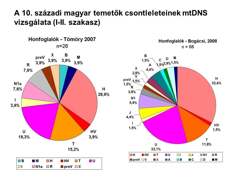A 10. századi magyar temetők csontleleteinek mtDNS vizsgálata (I-II. szakasz)