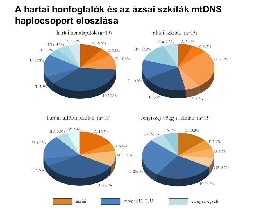 A hartai honfoglalók és az ázsai szkíták mtDNS haplocsoport eloszlása