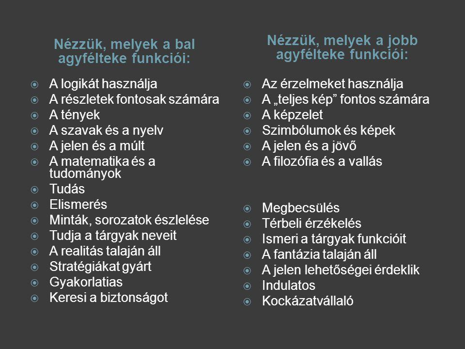 Nézzük, melyek a bal agyfélteke funkciói: Nézzük, melyek a jobb agyfélteke funkciói:  A logikát használja  A részletek fontosak számára  A tények 