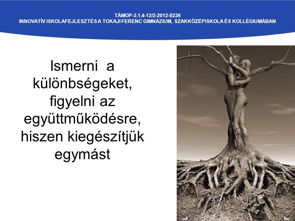 TÁMOP-3.1.4-12/2-2012-0236 INNOVATÍV ISKOLAFEJLESZTÉS A TOKAJI FERENC GIMNÁZIUM, SZAKKÖZÉPISKOLA ÉS KOLLÉGIUMÁBAN Ismerni a különbségeket, figyelni az együttműködésre, hiszen kiegészítjük egymást