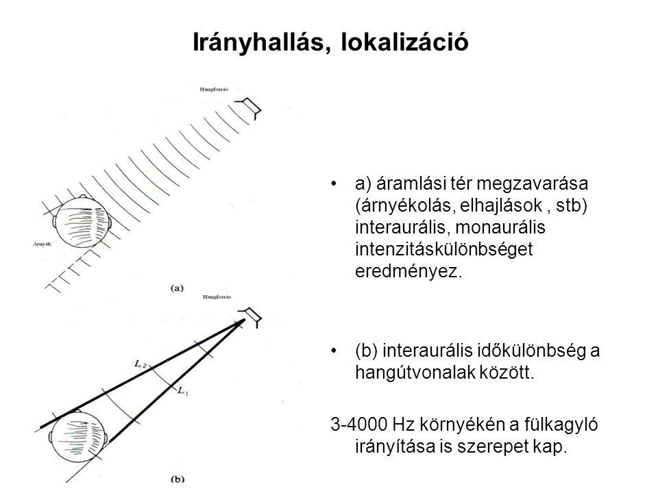 Irányhallás, lokalizáció a) áramlási tér megzavarása (árnyékolás, elhajlások, stb) interaurális, monaurális intenzitáskülönbséget eredményez. (b) inte