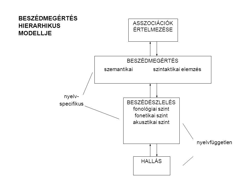 nyelv- specifikus nyelvfüggetlen ASSZOCIÁCIÓK ÉRTELMEZÉSE BESZÉDMEGÉRTÉS szemantikaiszintaktikai elemzés BESZÉDÉSZLELÉS fonológiai szint fonetikai szint akusztikai szint HALLÁS BESZÉDMEGÉRTÉS HIERARHIKUS MODELLJE