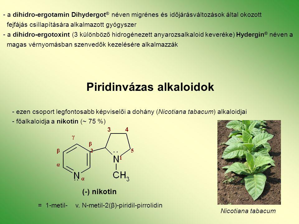 - a dihidro-ergotamin Dihydergot ® néven migrénes és időjárásváltozások által okozott fejfájás csillapítására alkalmazott gyógyszer - a dihidro-ergotoxint (3 különböző hidrogénezett anyarozsalkaloid keveréke) Hydergin ® néven a magas vérnyomásban szenvedők kezelésére alkalmazzák Piridinvázas alkaloidok - ezen csoport legfontosabb képviselői a dohány (Nicotiana tabacum) alkaloidjai - főalkaloidja a nikotin (~ 75 %) Nicotiana tabacum 3 4 γ β β 2..
