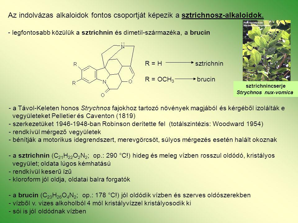 Az indolvázas alkaloidok fontos csoportját képezik a sztrichnosz-alkaloidok.