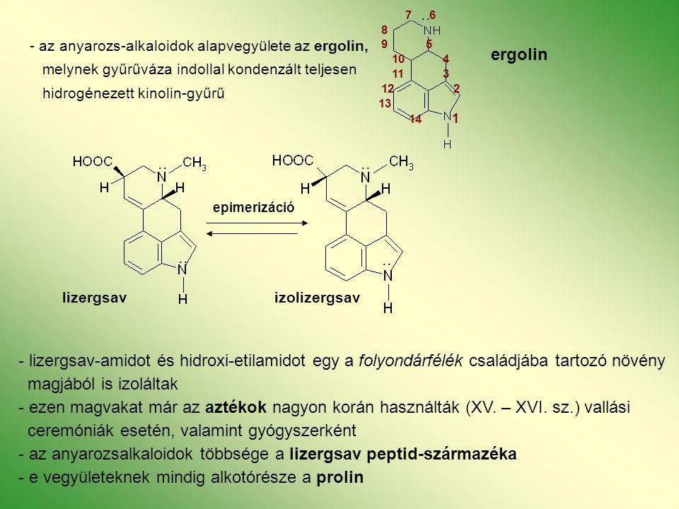 - az anyarozs-alkaloidok alapvegyülete az ergolin, melynek gyűrűváza indollal kondenzált teljesen hidrogénezett kinolin-gyűrű ergolin lizergsav izolizergsav - lizergsav-amidot és hidroxi-etilamidot egy a folyondárfélék családjába tartozó növény magjából is izoláltak - ezen magvakat már az aztékok nagyon korán használták (XV.