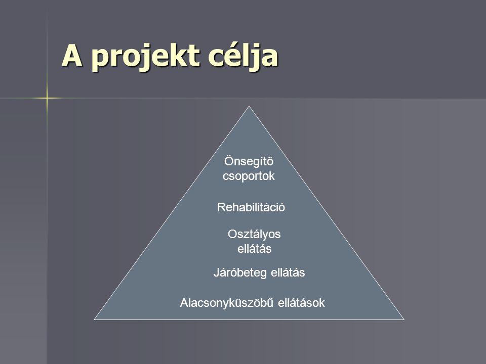 A projekt célja Alacsonyküszöbű ellátások Járóbeteg ellátás Osztályos ellátás Rehabilitáció Önsegítő csoportok