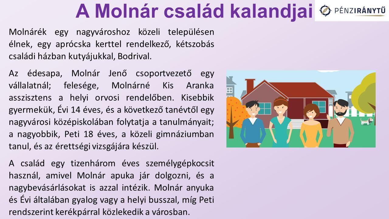 A Molnár család kalandjai Molnárék egy nagyvároshoz közeli településen élnek, egy aprócska kerttel rendelkező, kétszobás családi házban kutyájukkal, B